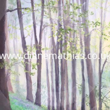 Bluebells in Henllan Woods - Original Pastel