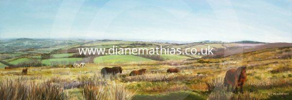 Llanllwni Mountain Ponies