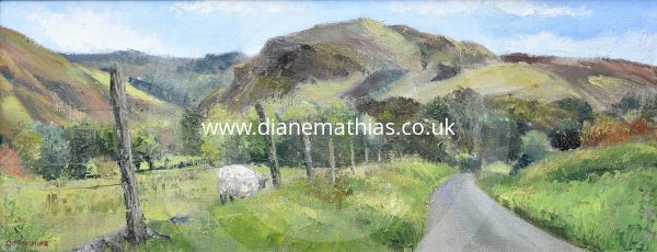 mountain road, Tregaron