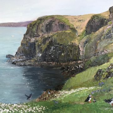 High Cliff, Skomer Island