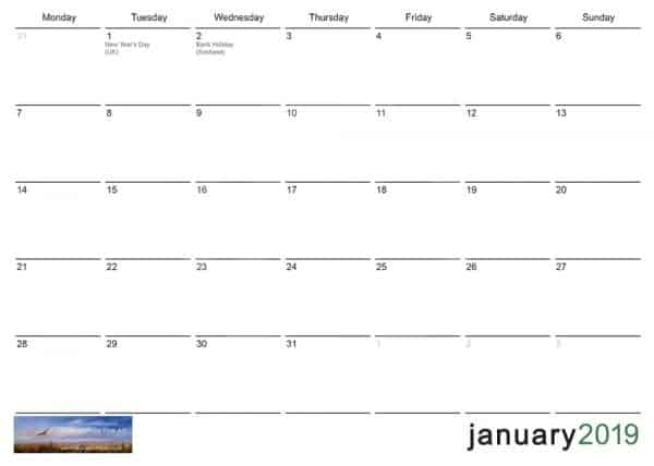 Diane Mathias 2019 Calendar