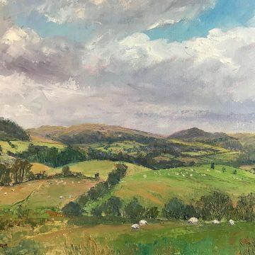 Llanwrtyd landscape