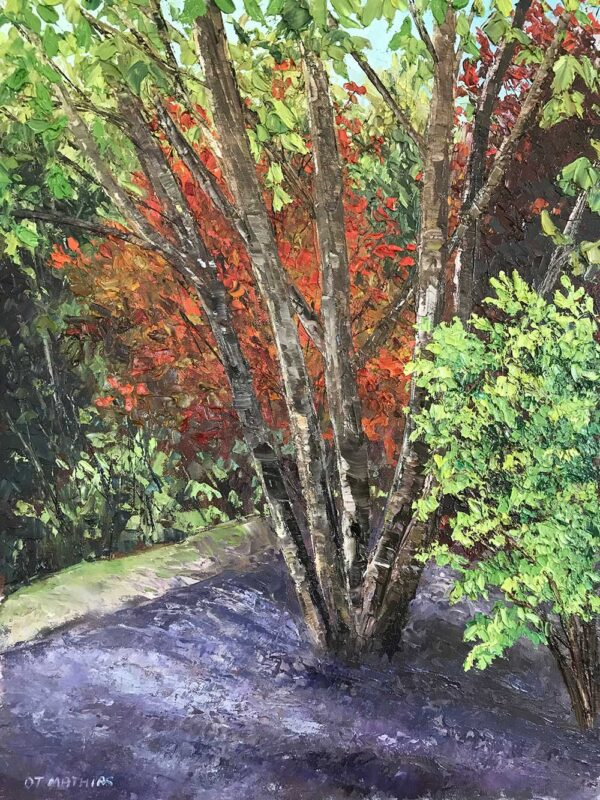 Woodland Garden
